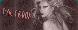 Gaga sur Facebook