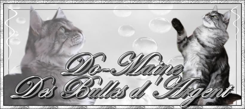 Do-Maine Des Bulles D'Argent