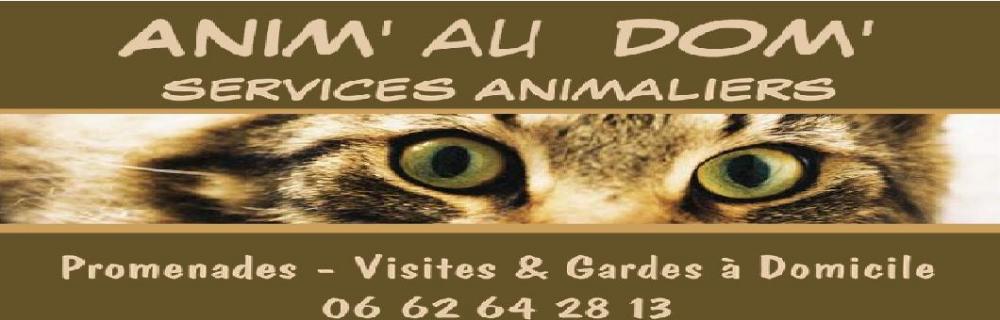 ANIM' AU DOM'  Visites, Gardes, Promenade d'Animaux à Domicile