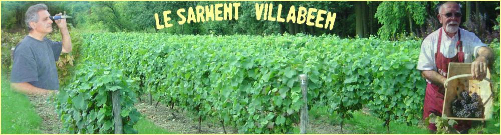Le Sarment Villabéen