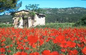Maison à Rosières