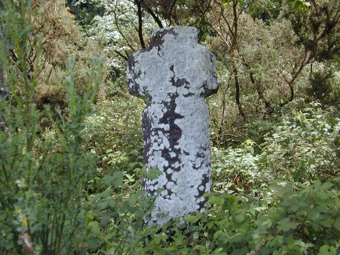 Plélan croix Trécouet (2-P)