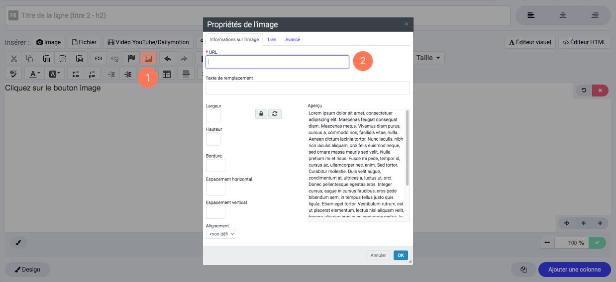 Ajouter une image dans une page avec l'éditeur visuel