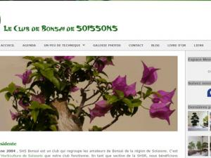 Bonsai soissons
