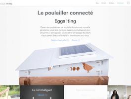 Eggs iting startup