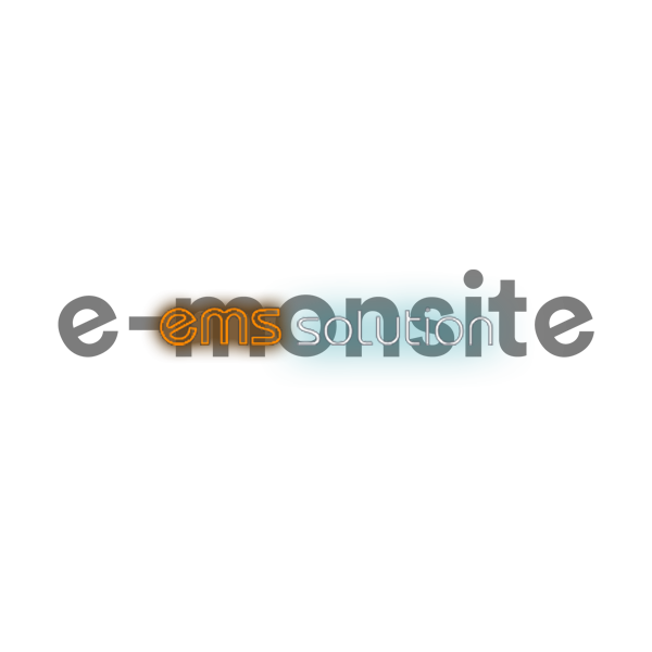 EMS Solution : e-monsite pour les pros