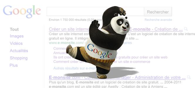 google-panda-extrait.jpg