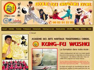 Kung fu wushu nice