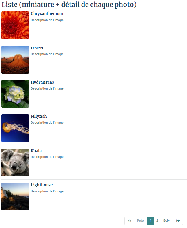 Liste miniature et details de chaque photo