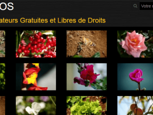 Photos libres
