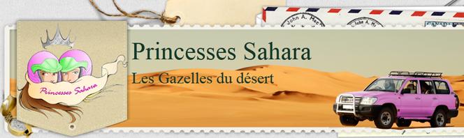 Créer un site pour trouver des sponsors : les gazelles du désert