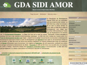sidi-amor-org.png