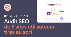 Webinar audit seo 5 sites